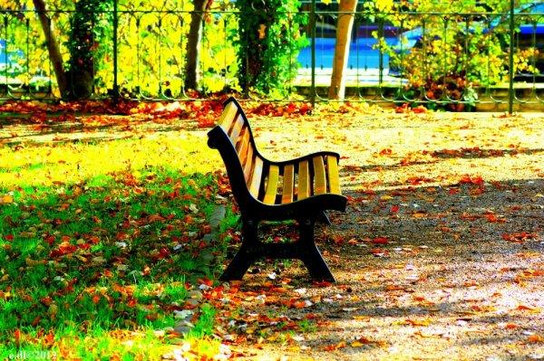 Assis sur un banc... Part 20
