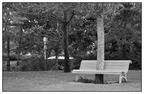 Assis sur un banc... Part 26