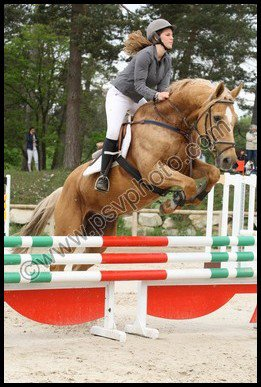 Concours Fontainebleau