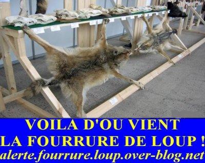 Non à la fourrure de loup