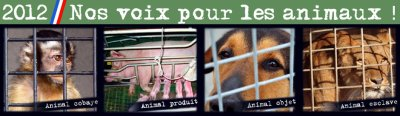 Rassemblement national de la protection animale