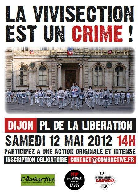 STOP AUX ANIMAUX DANS LES LABOS! ACTION SALE A DIJON LE 12 MAI 2012