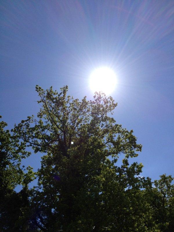 il est pas beau le soleil en Picardie