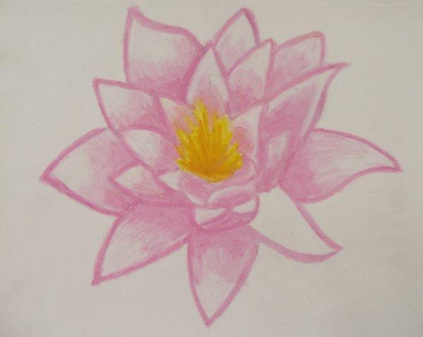 dessin Fleur ~~ <3