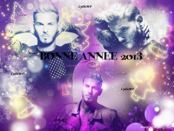 Bonne Année 2013! Happy New Year 2013