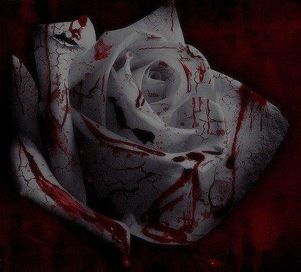 Chapitre 8 - In my veins