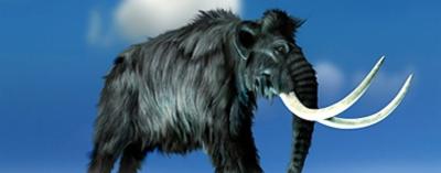 Donner vie au mammouth grâce au clonage