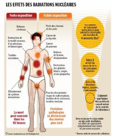 Les effets des radiations sur le corps humain