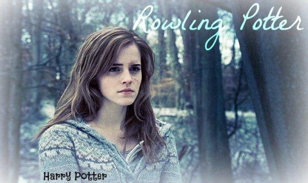 Bonjour à tous sur mon blog RowlingPotter !