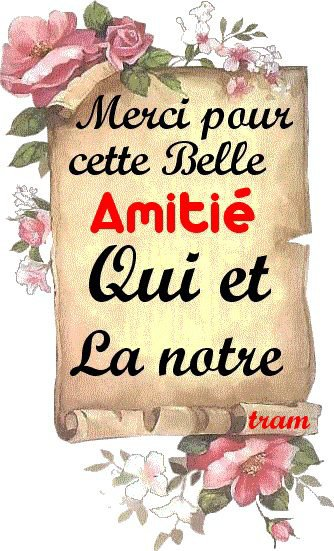 A mes amis