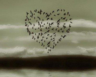 L'Amour est plus fort que la Mort (8)