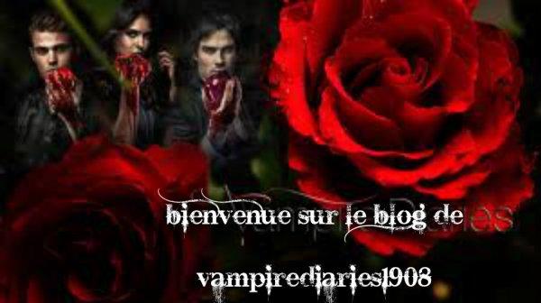 bonjour et bievenue sur le blog de vampirediaries1908