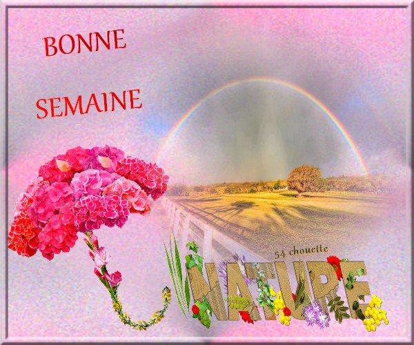 <>-۞-<> BONJOUR ET BONNE SEMAINE LES AMI(E)S<>-۞-<>