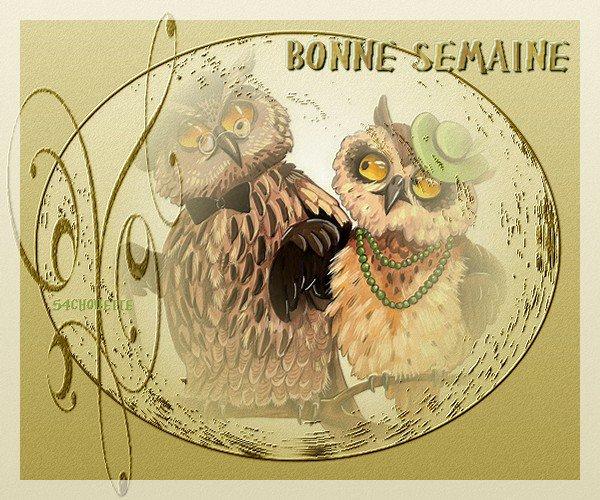 <>-○◊◊○-<> BONNE SEMAINE  LES AMI(E)S  <>-○◊◊○-<>