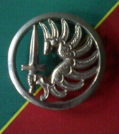 """Légion Etrangère """" 1er et 2ème BEP"""" / """"1er REP et 2ème REP"""""""