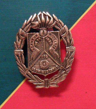 Légion Etrangère 1er REC