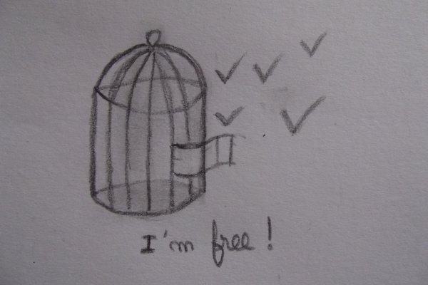 ~* Tu es toujours libre de changer d'idée et de choisir un futur différent *~