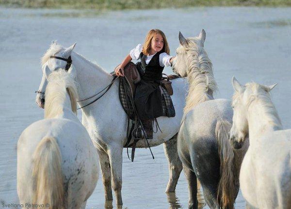 ... pour posséder un cheval, l'accord des mains et des jambes est indispensable ! ♥