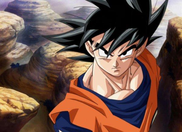 [ FIGURINES ] Real Action Heroes - Dragon Ball Z : Sangoku