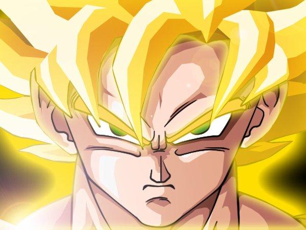 [ FIGURINES ] Real Action Heroes - Dragon Ball Z : Sangoku Super Sayen