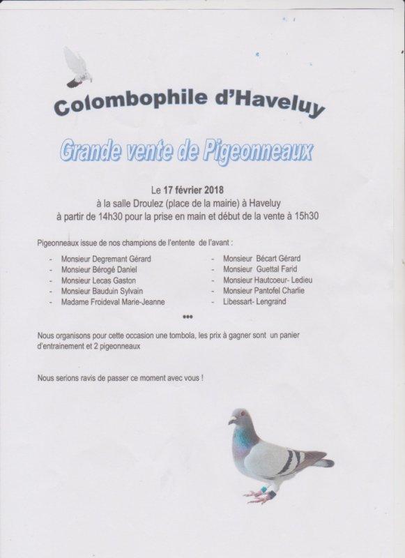 vente de pigeonneaux a Haveluy