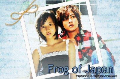 Frog Of Japan