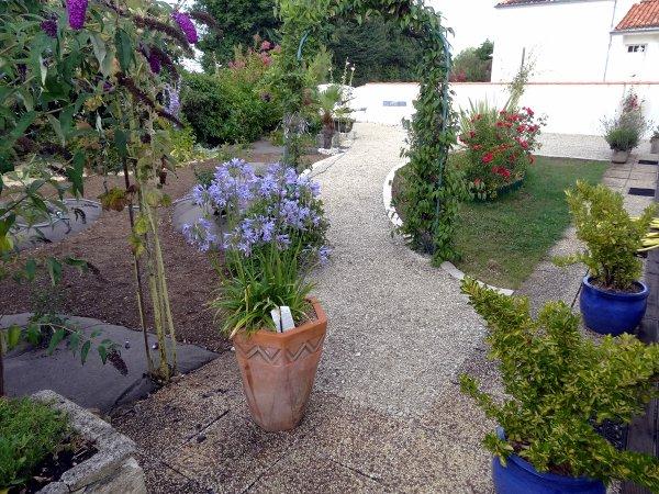 aménagement d'un jardin à Aigrefeuille