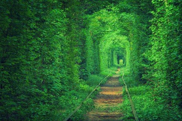 Un chemin qui ne mène nul part !