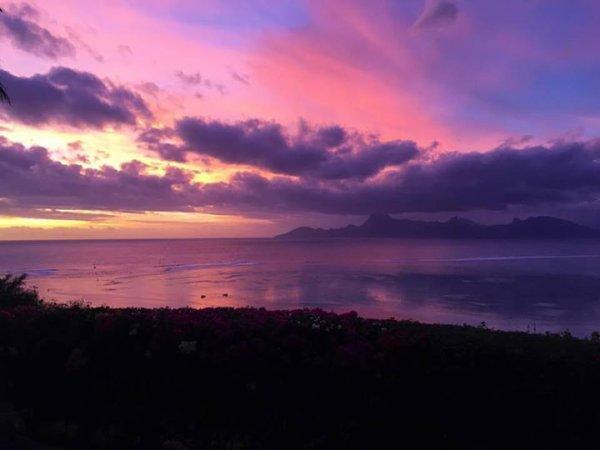 Marine - Stage à Tahiti