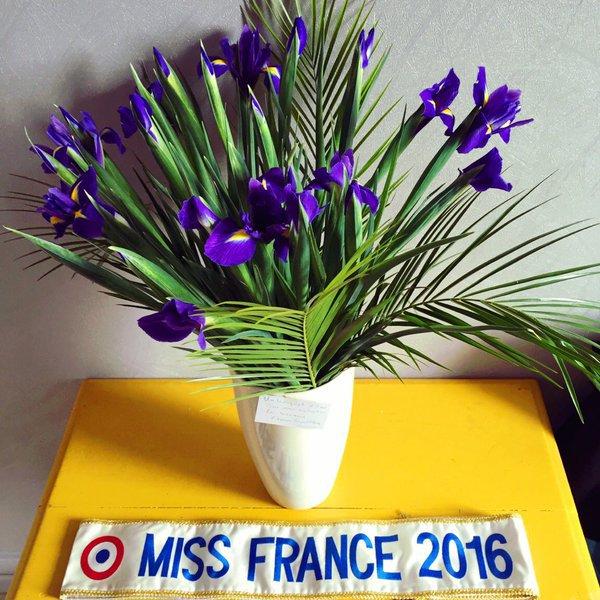 Iris - Séance de dédicaces Rapid'Flor