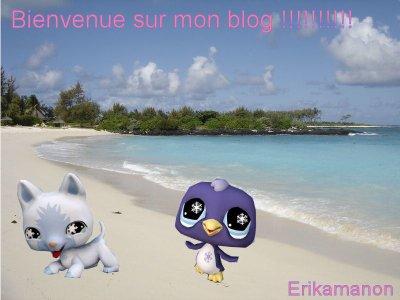 bienvenue sur mon blog !!!!!!!!!!!!!!
