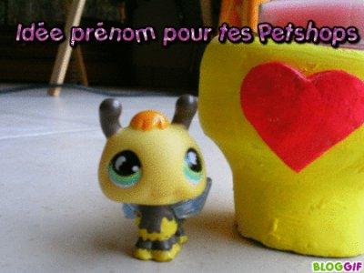 Prénom Petshop