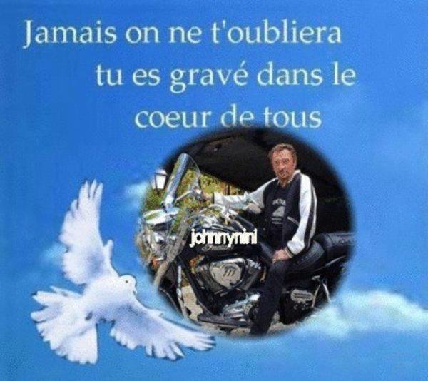 Hommage a notre jojo qui nous a quitter il y a 1 an ce 6 décembre  repose en paix on ne t'oublie pas