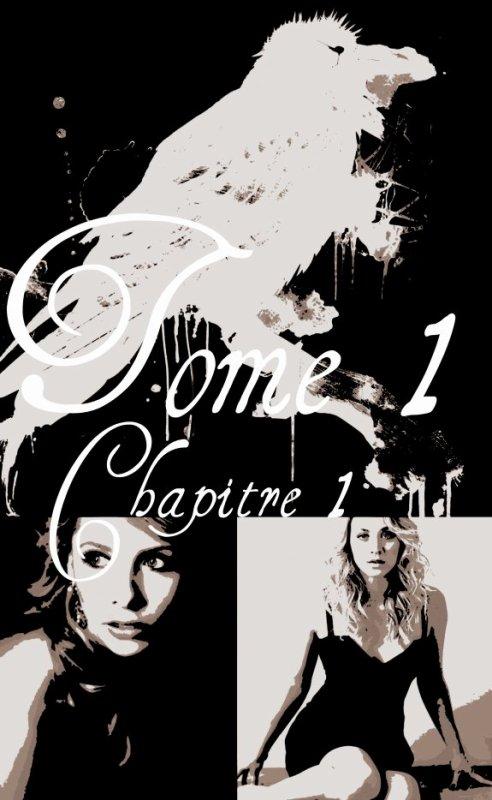 Tome 1 : Chapitre 1