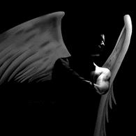 Coeur d'ange ...