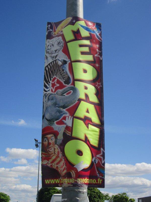 reportage cirque Medrano a Niort