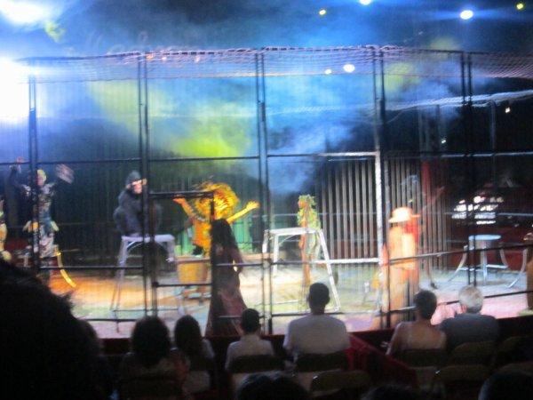reportage cirque Medrano a Niort 12