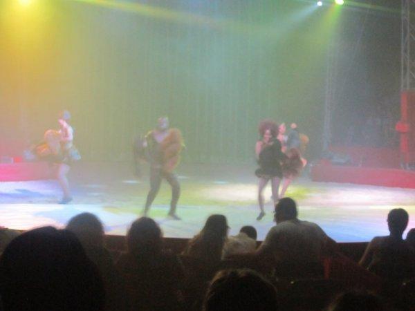 reportage cirque Medrano a Niort 19