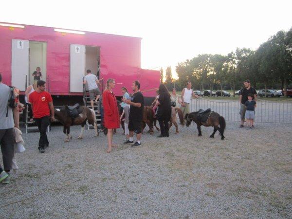reportage cirque Medrano a Niort 22