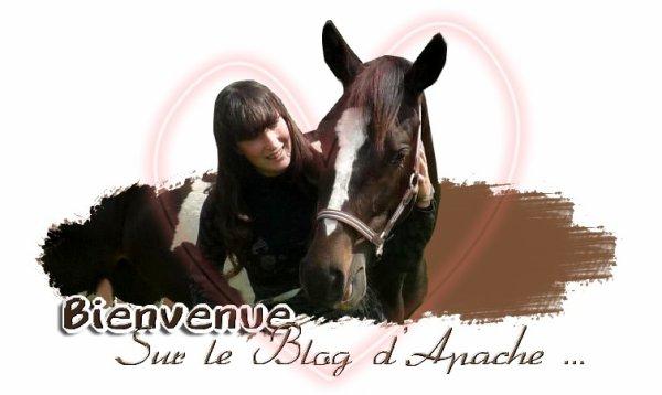 Apache de Claids et Laura P.