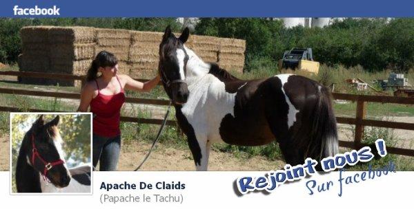 Apache sur le Net ...