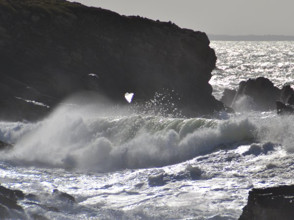 Au coeur des vagues 26 fev