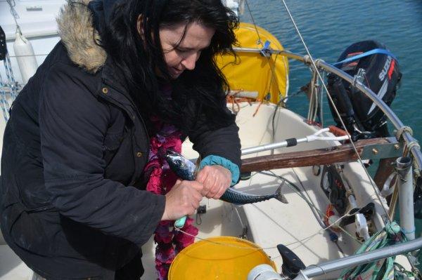 Balade en voilier 25 avril