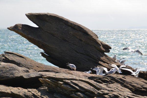 Le  rocher de l'aigle