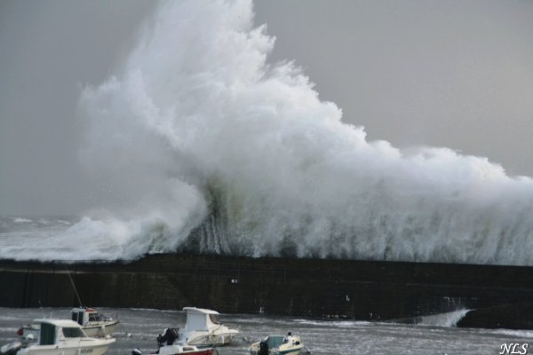 Une vague de plus de 10 m de haut ,8fev