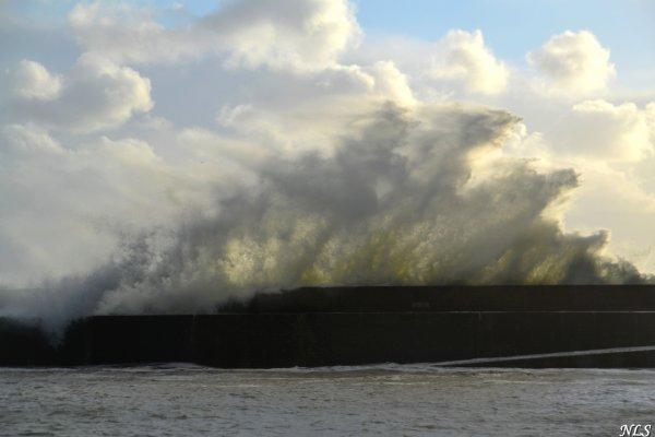 9 fev port maria