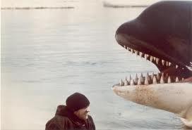 film orca