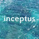 Photo de inceptus