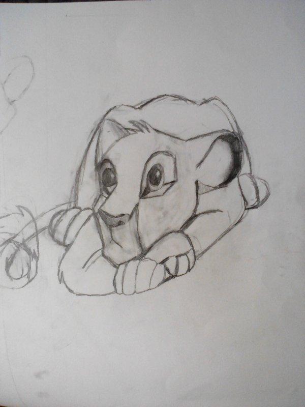 Mon Simba jolie n'est pas