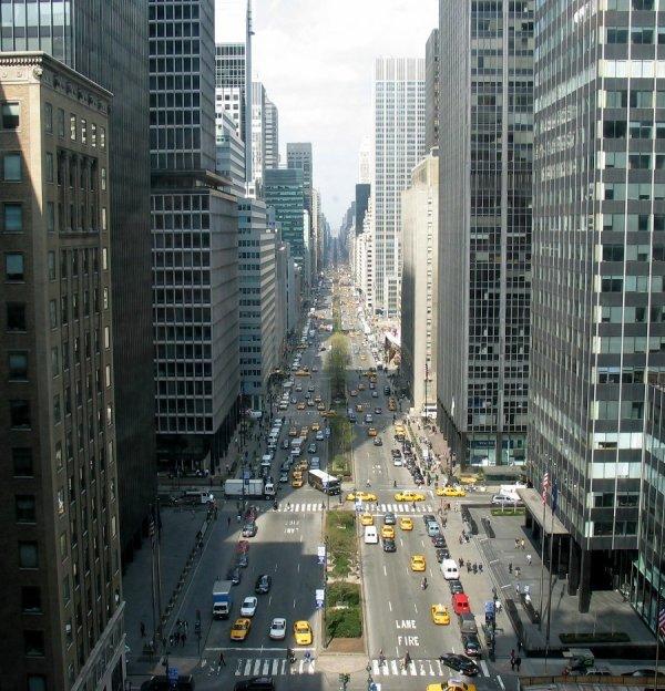 La Cinquieme avenue.
